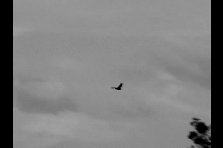 David Mackenzie, Where the Crow Flies Backwards,2006, single channel video + sound, 6:50min