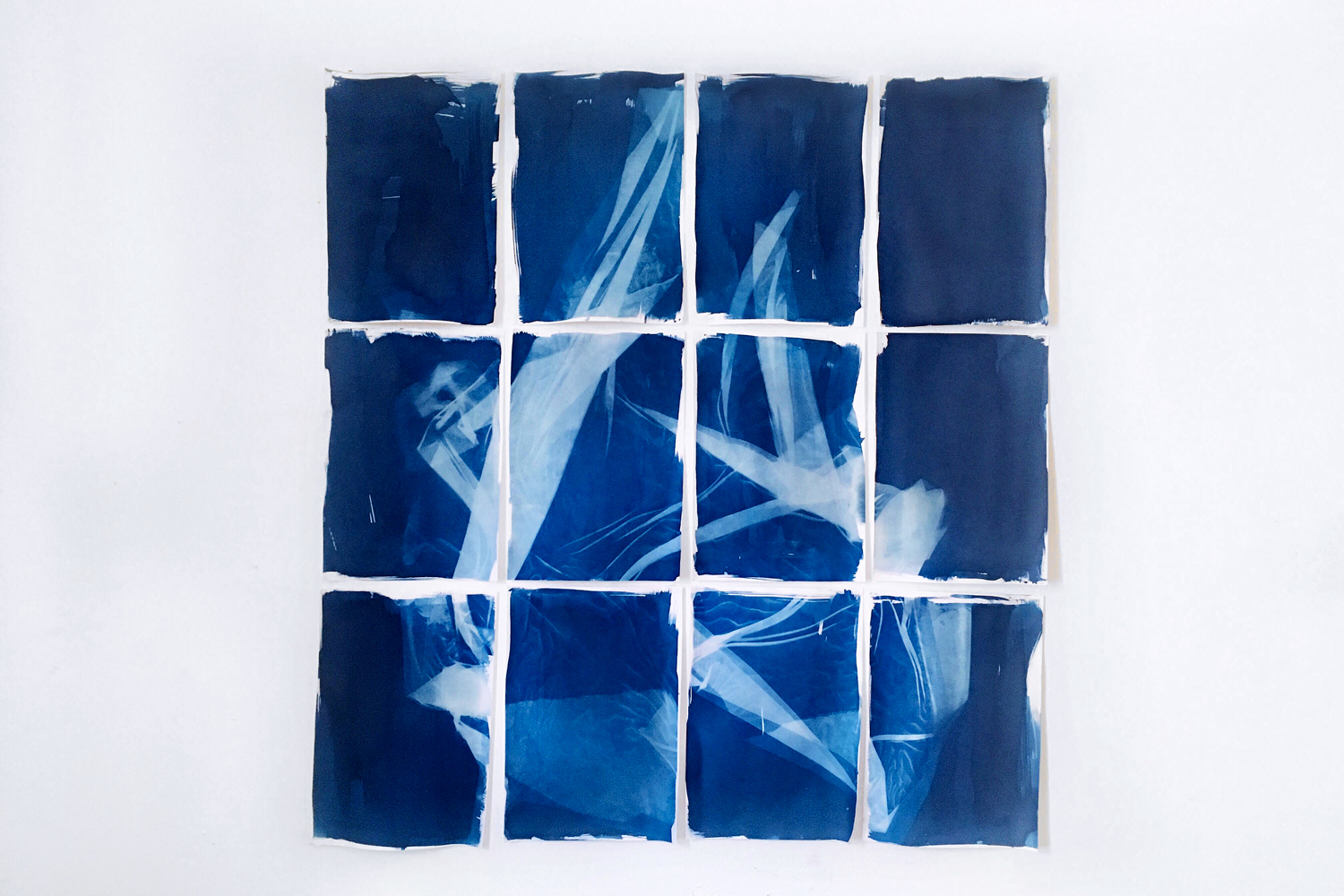 Talia Smith,  Drink Deep,  2018, Cyanotype on watercolour paper, Dimensions variable | Courtesy the artist.
