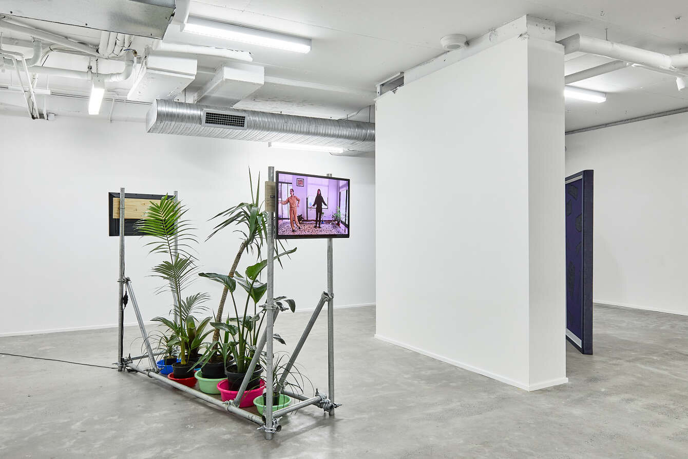 Eugene Choi,  My mother only speaks Shanghainese when she talks to her brother on the phone (these plants are a gift for her) , 2017, 2-channel video installation (dur. 8:38 & 11:27), galvanised steel pipe, cast steel clamps, pinewood, various plants | Courtesy the artist.