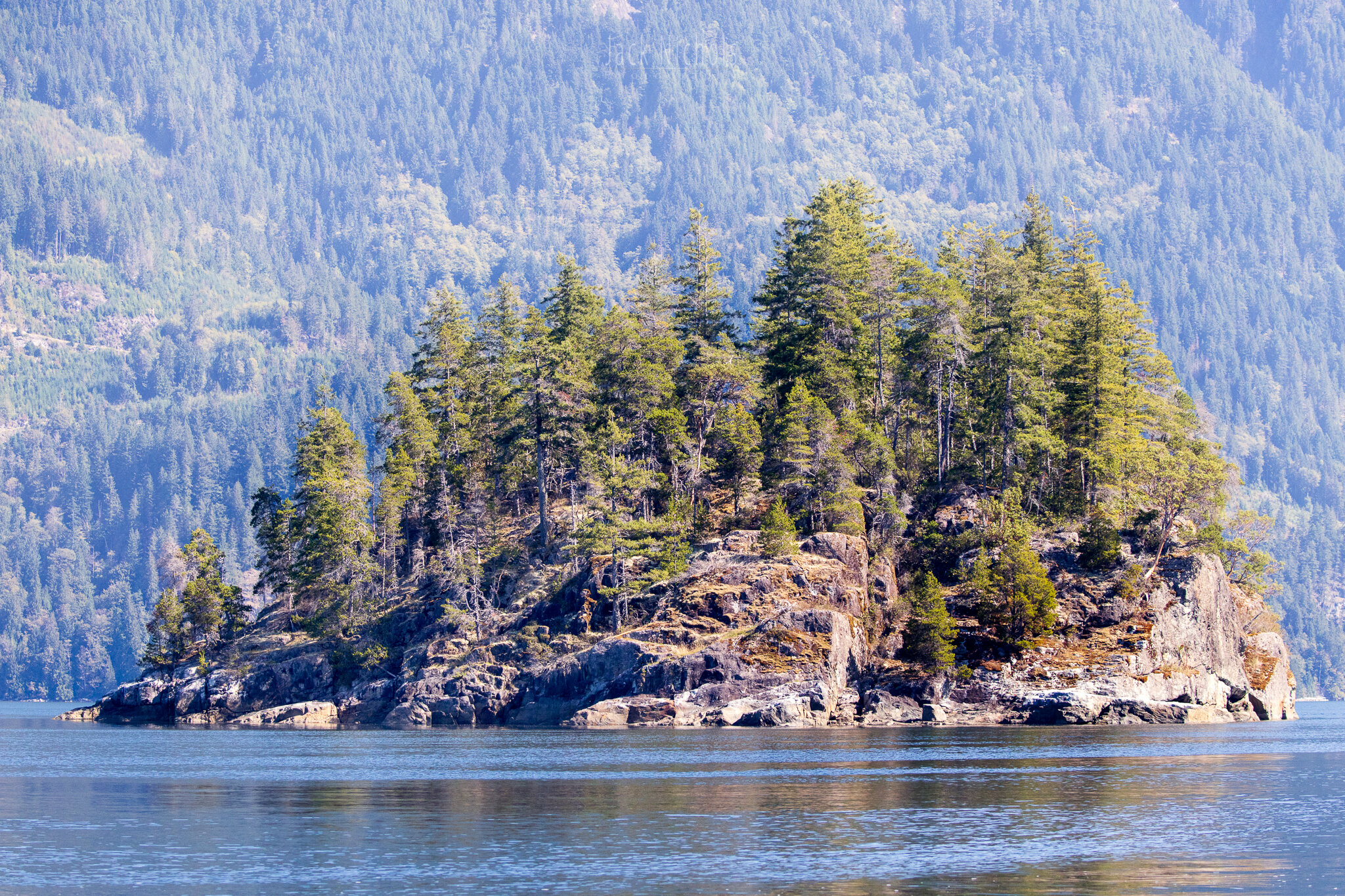 Campbell River, Water - Small forested island lit by the sun-20190906.jpg