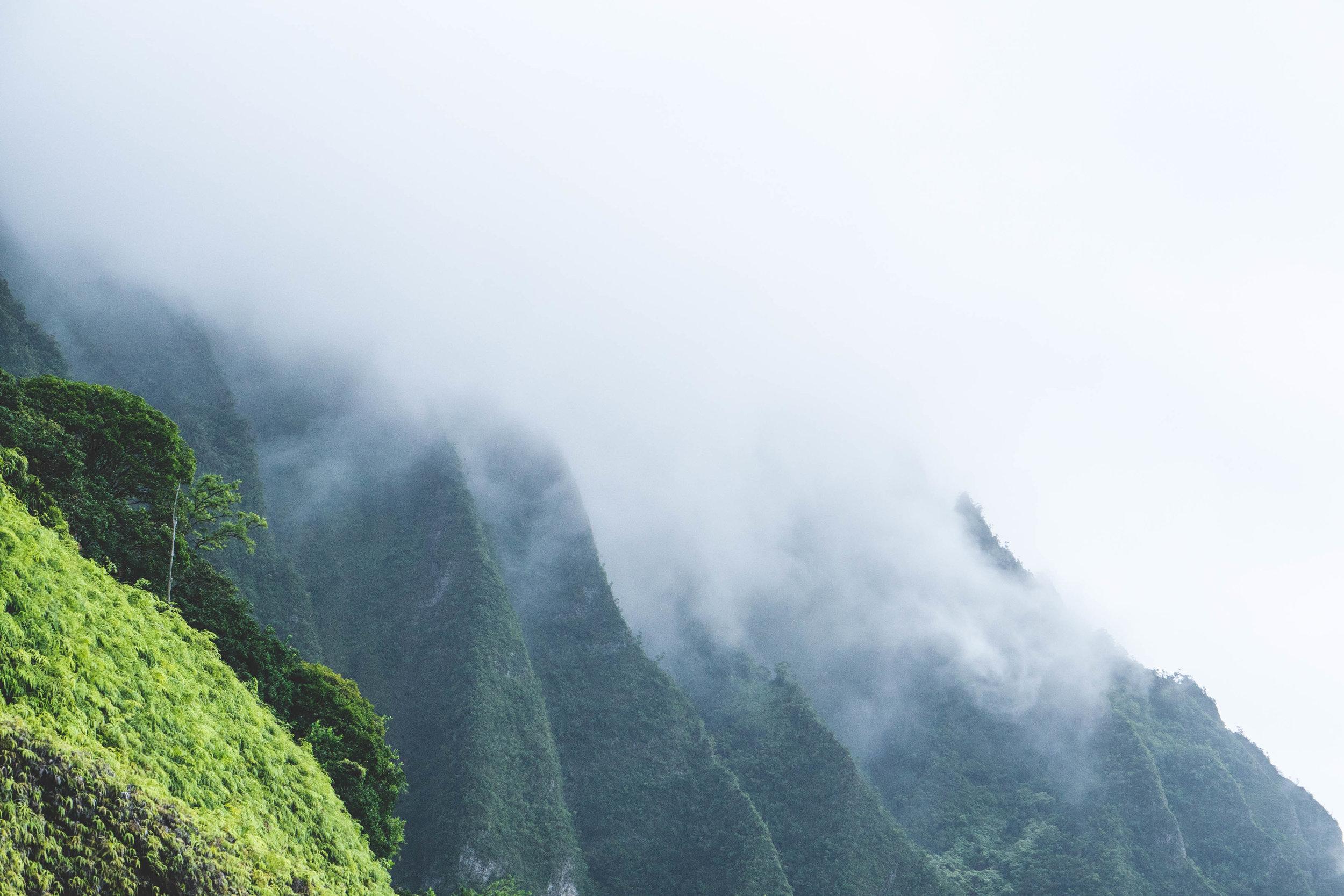hawaiiwithmahalo-48.jpg