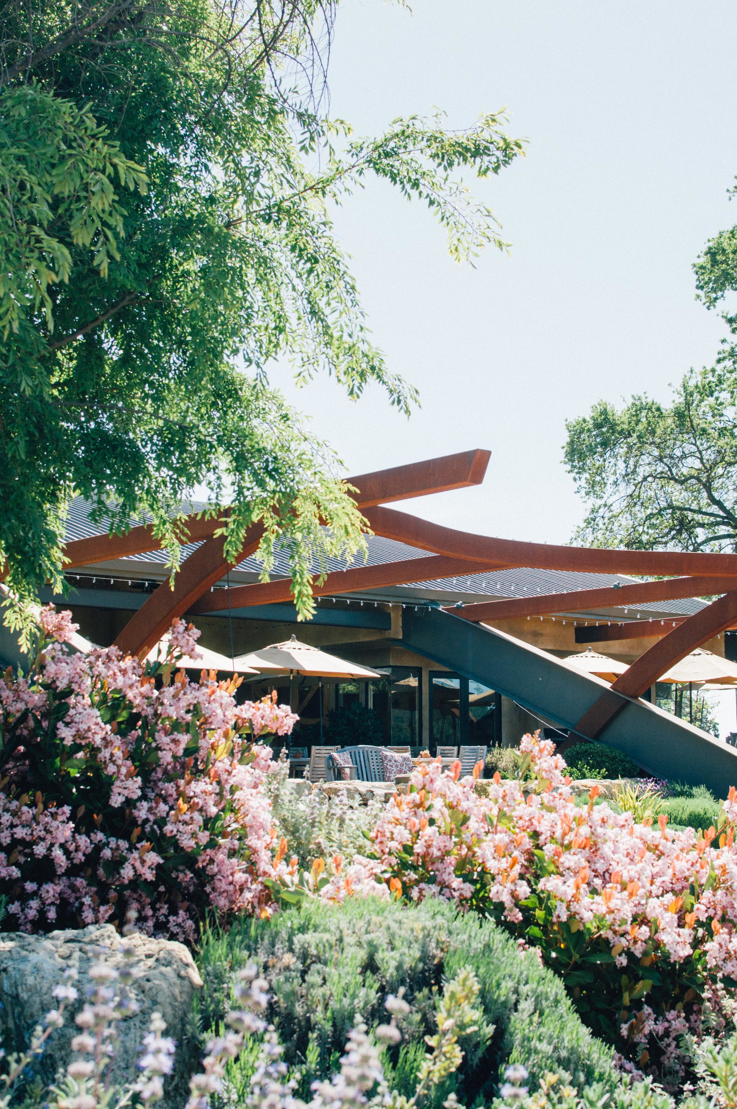 Denner Vineyards - The beautiful steel tasting room sits atop a hill overlooking the far western side of Paso Robles.