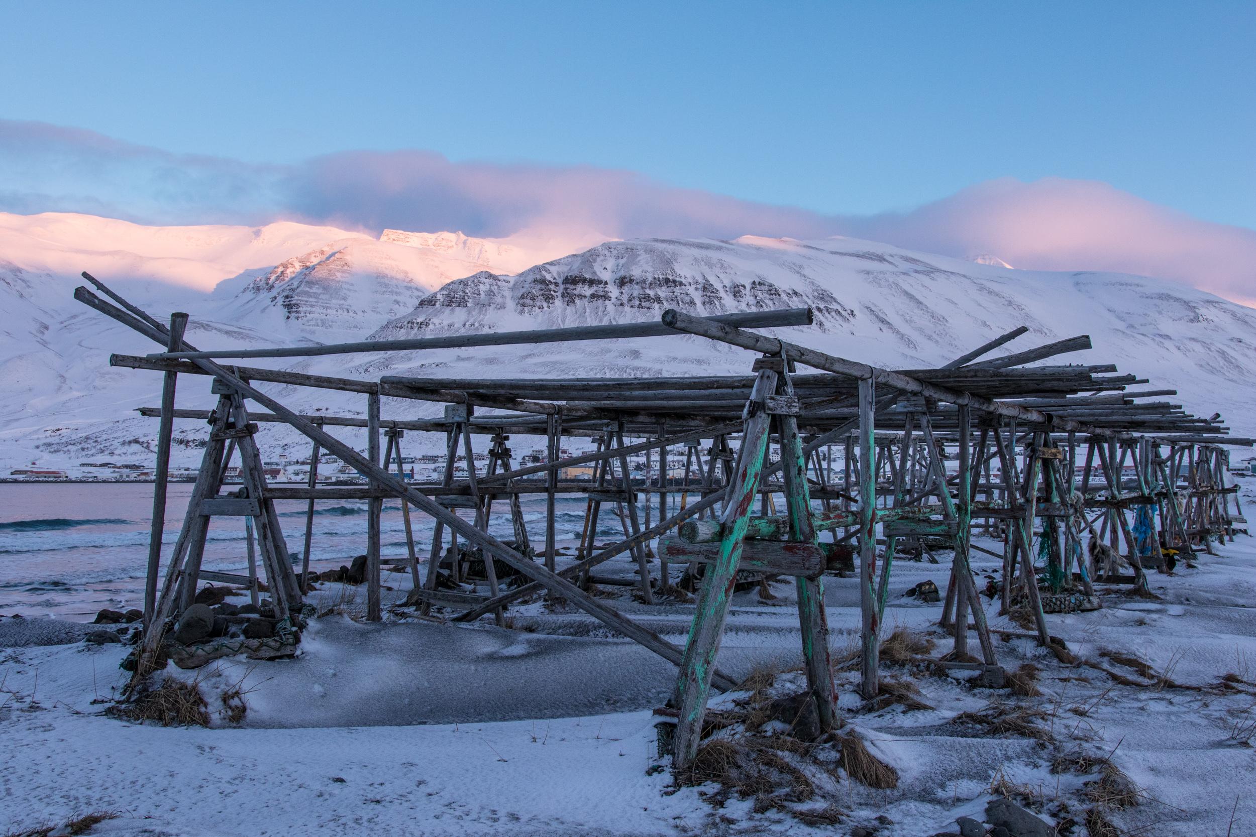 ALandShapedByWomen_Iceland_2018_Anne-Flore_Marxer_Aline_Bock_Photo_Eleonora_Raggi__69A0058.jpg