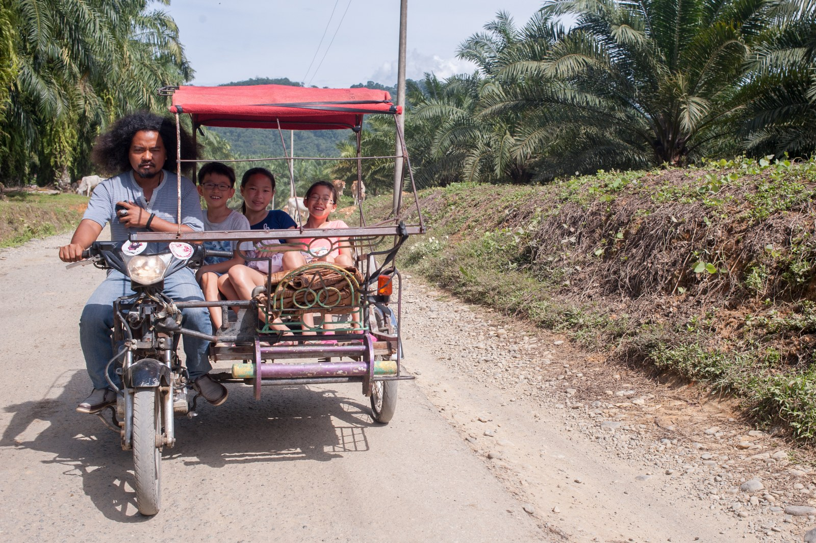 On the third day, we hired a few becaks to take us to a family durian plantation, a palm sugar factory and a tofu making factory.