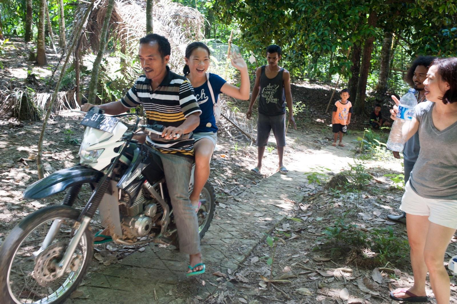 bukit-lawang-durian-plantation-4