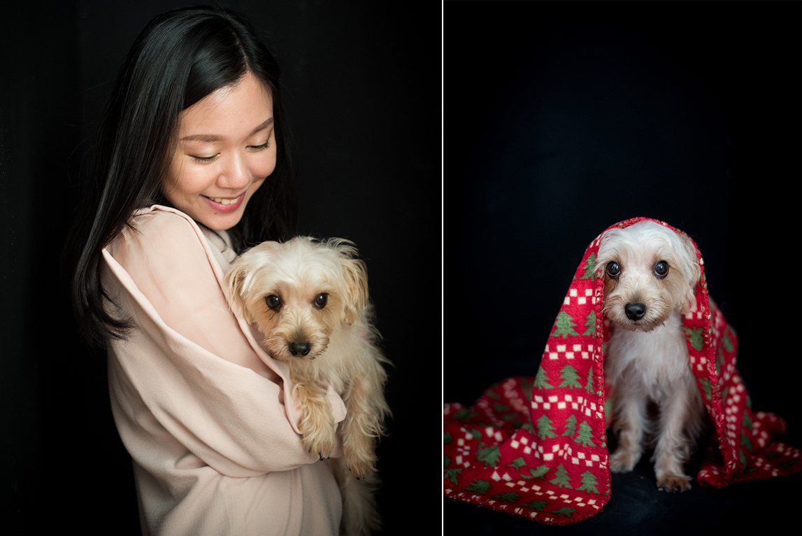 family-photo-pet-dog-photography-FH-0104a.jpg