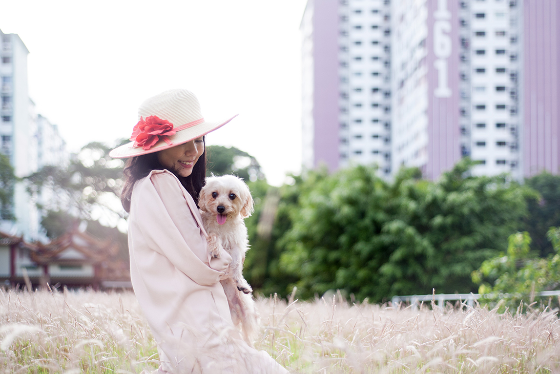 family-photo-pet-dog-photography-05