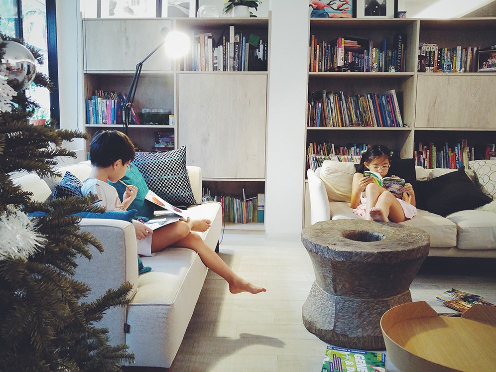 home-library-kids-book-lovers-02