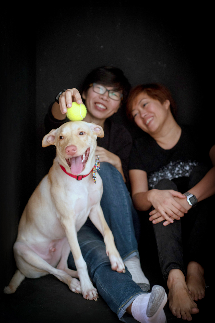 family-dog-studio-photography-js-03