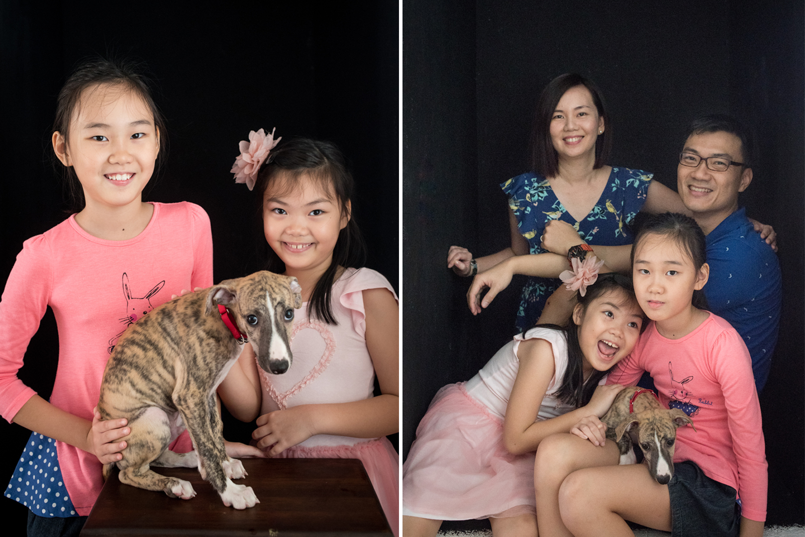 sg-pet-dog-family-photography-03