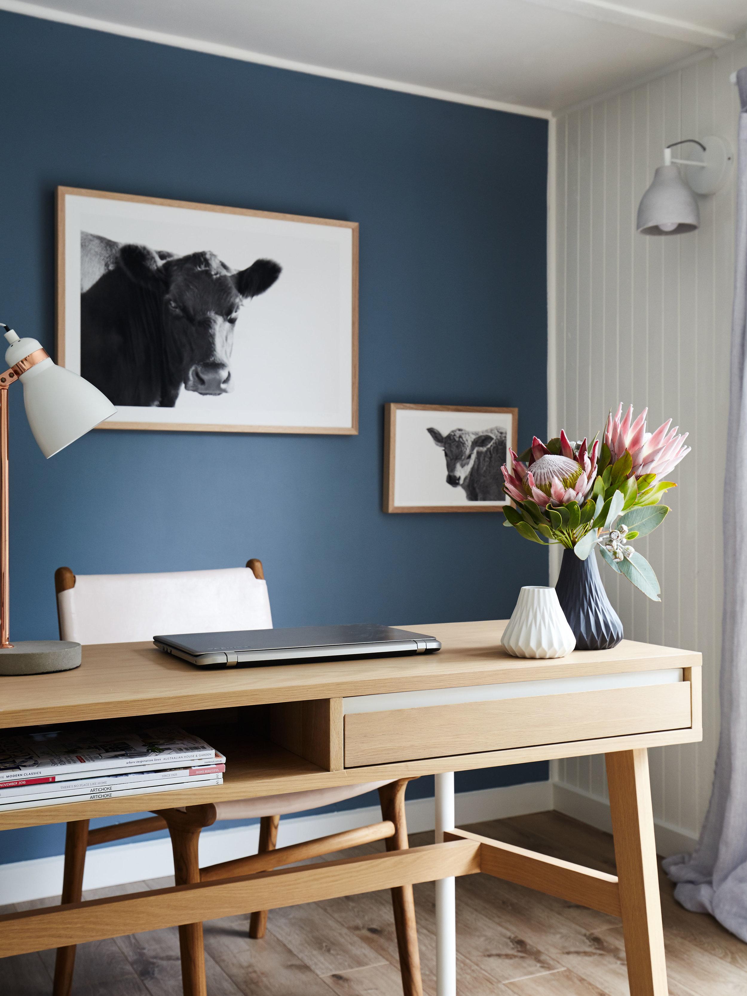 Maitland Street Interiors, Sarah Elshaug, Elsie + Hugo, The MSI Studio, Photographic Artist, Cow Prints