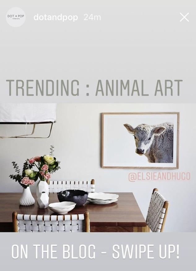 Elsie + Hugo, Maitland Street Interiors, Sarah Elshaug, Animal Art, Limited Edition Prints