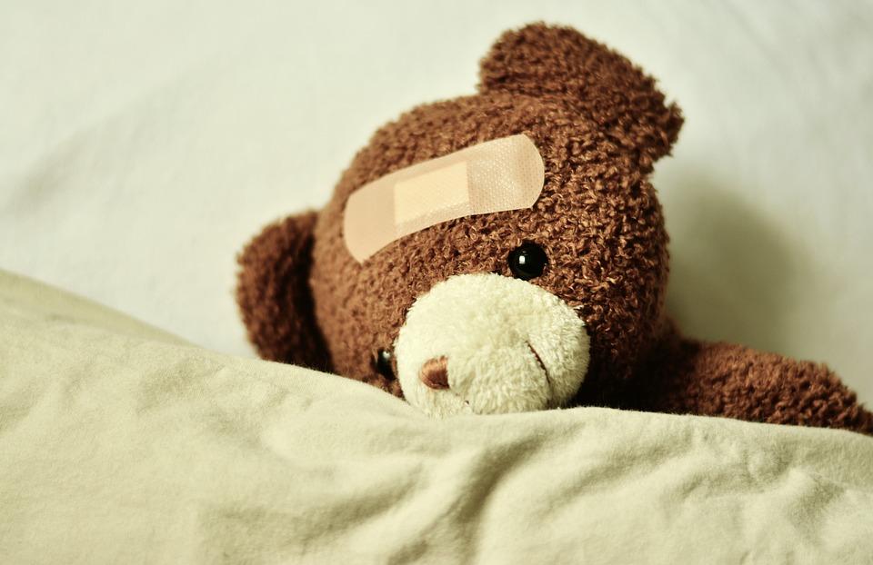 teddy-3183563_960_720.jpg