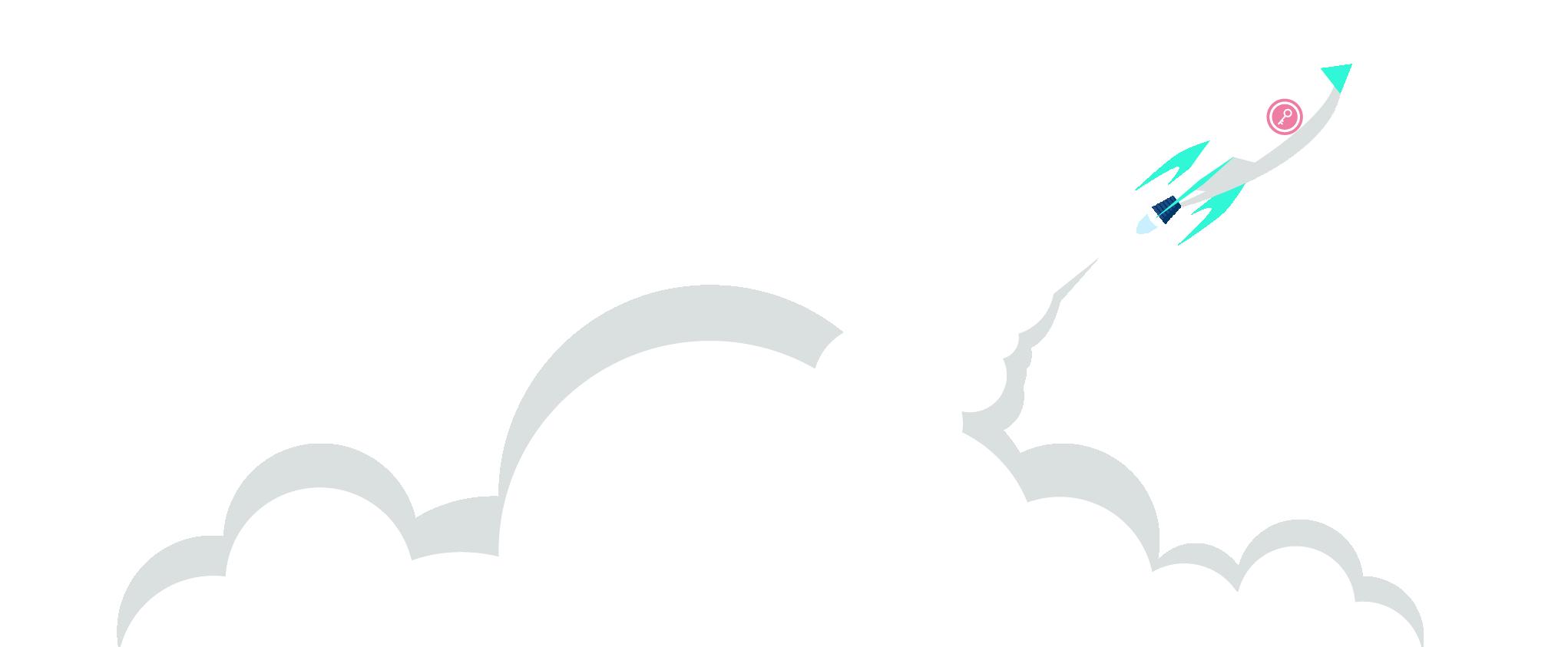 Picnic rocket - fast