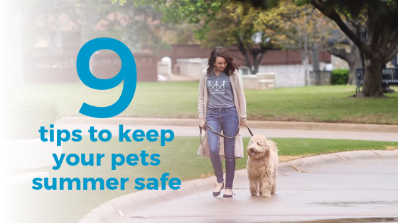 tips to keep your pets summer safe.png