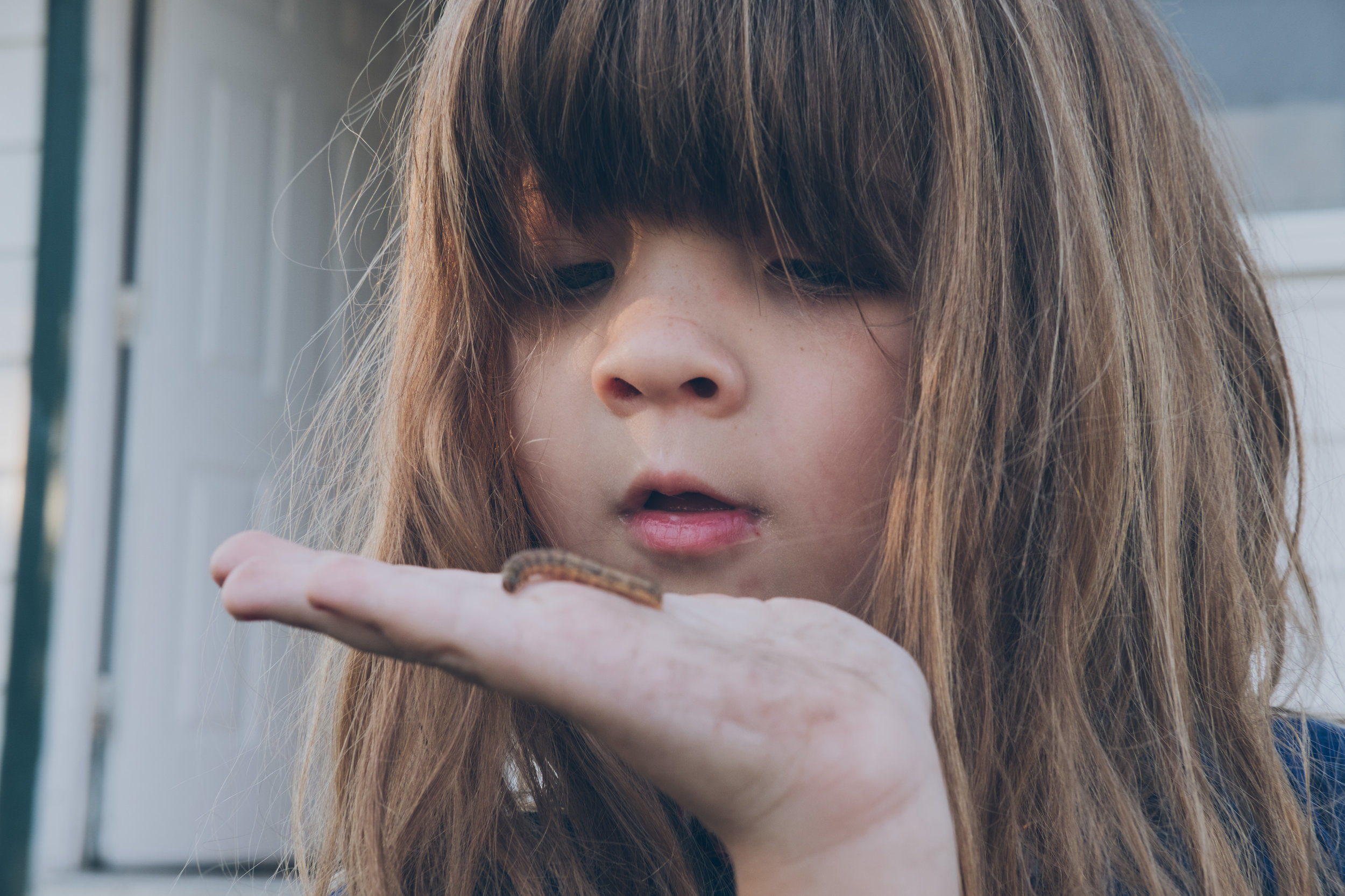 Little child holding bug in hand close to face