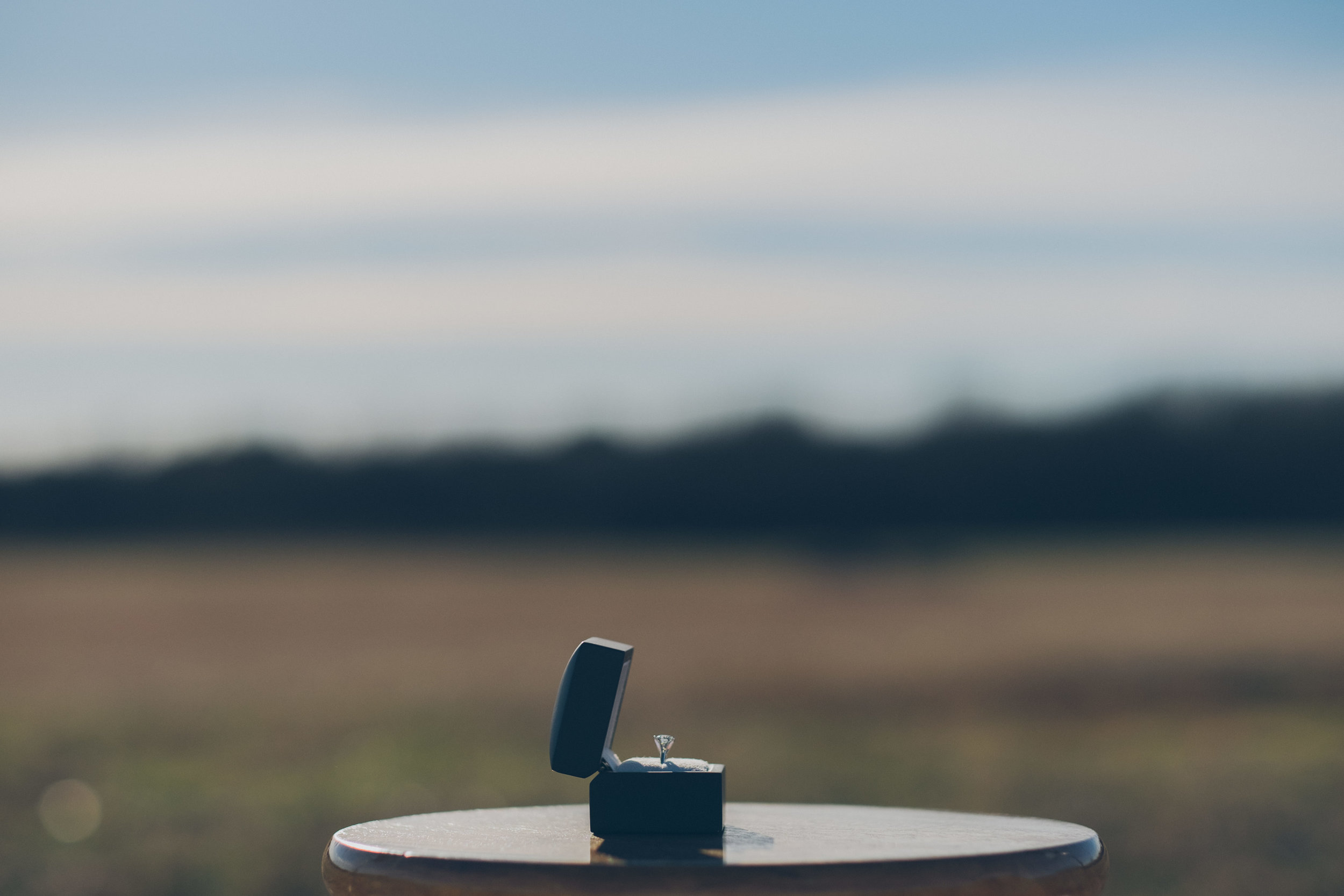 Color photo of wedding ring sitting on a stool