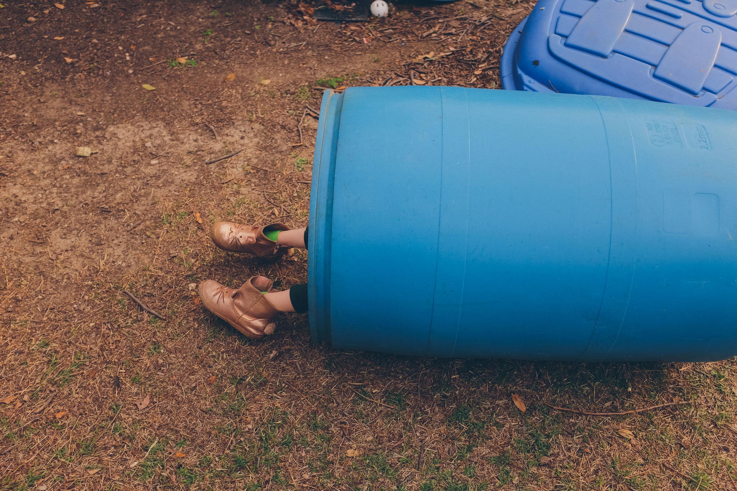 February 26. Harper Meadow in a barrel.