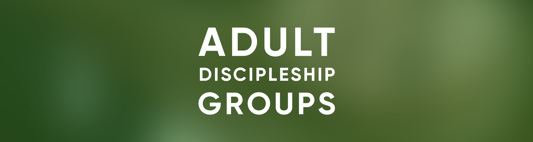 LIMACC_WEB_ADULT DISCIPLESHIP BANNER.jpg