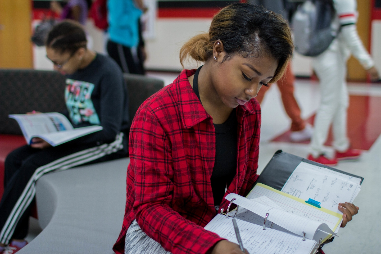 The Advanced Programs in Metro Schools
