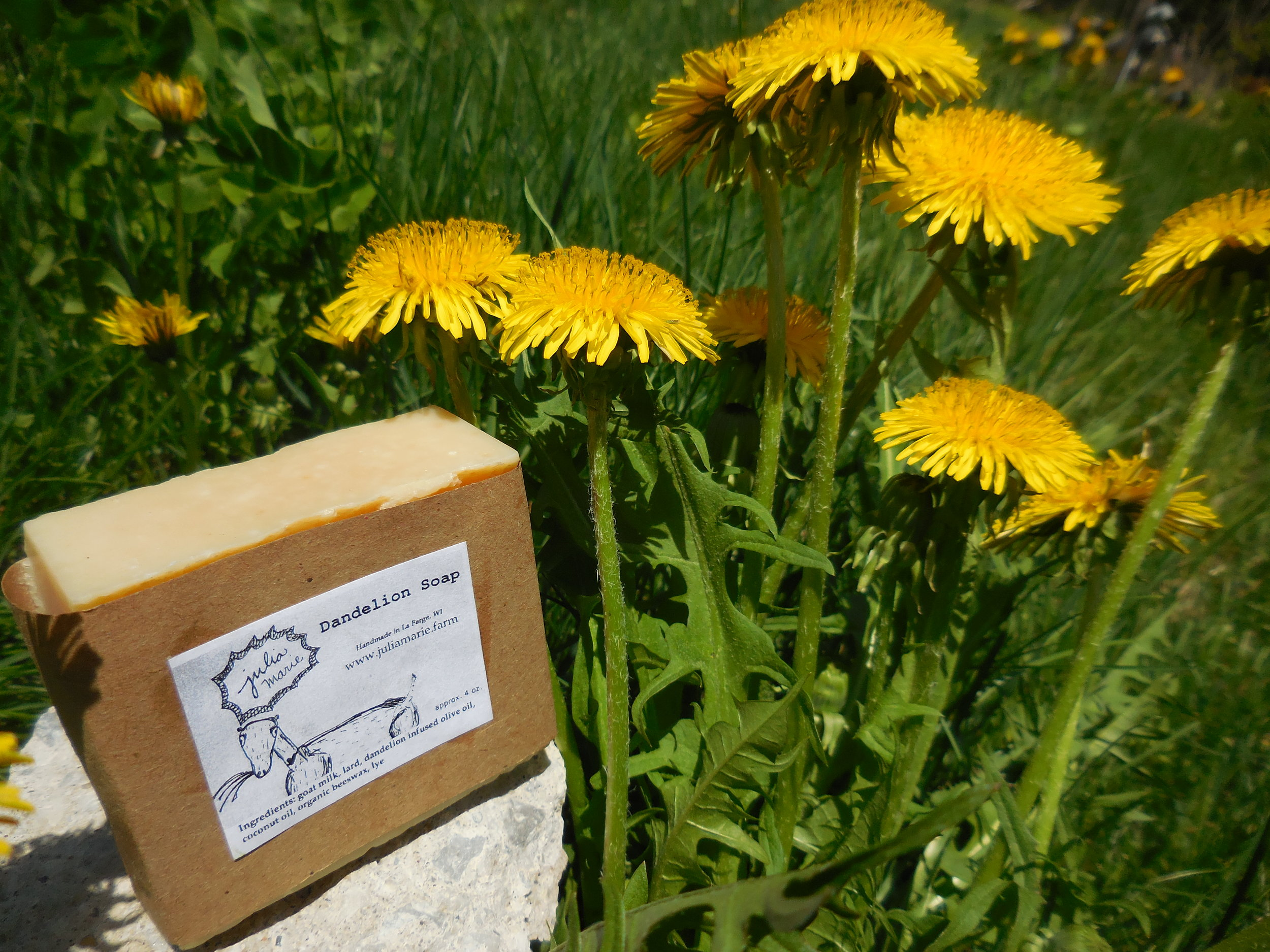Dandelion Soap - spring sunrays trapped in this soap, ready for a long winter's night