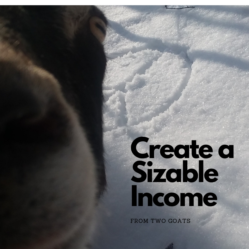 Create a Sizeable Income.jpg