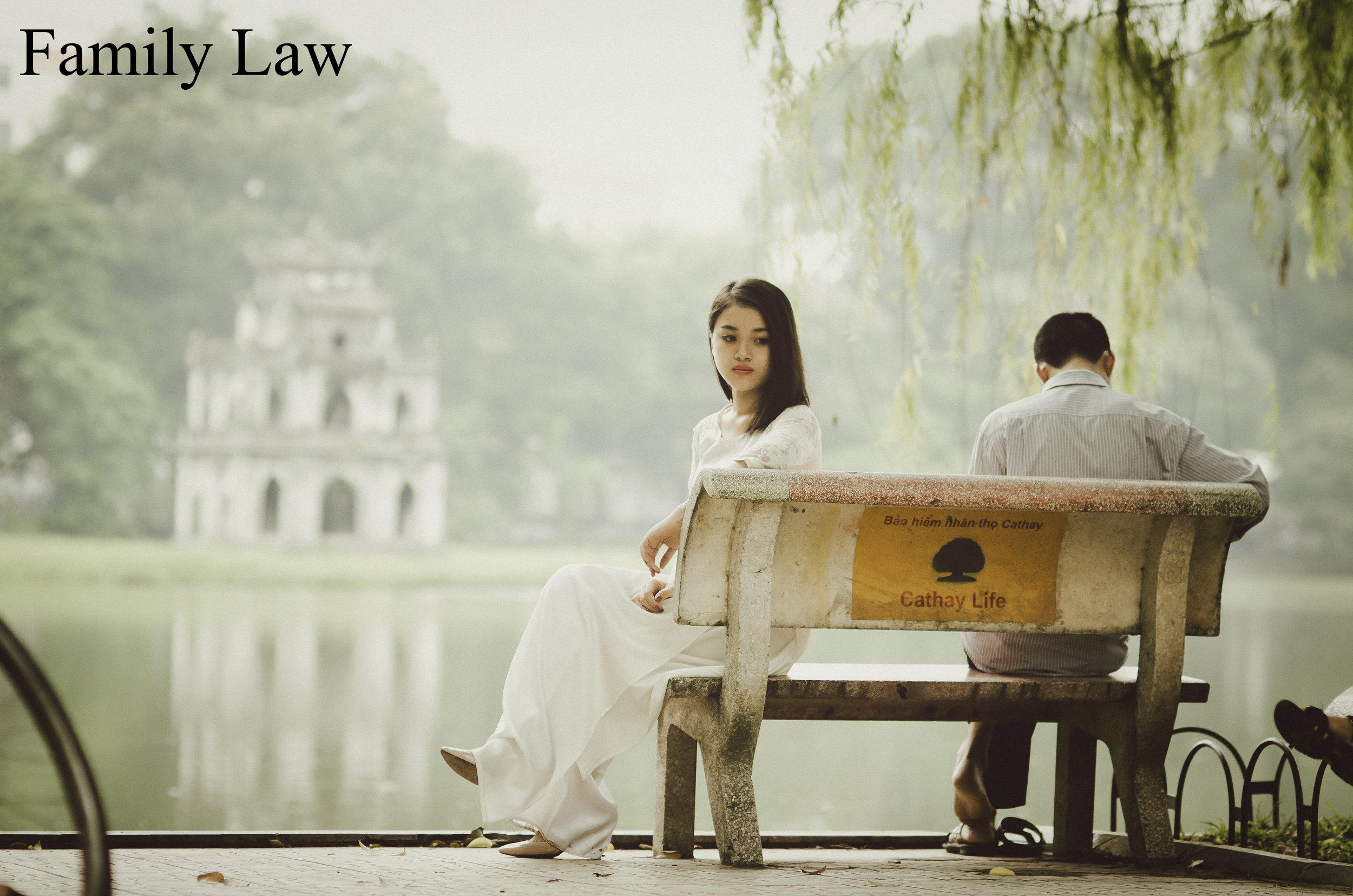 Family Law copy.jpg