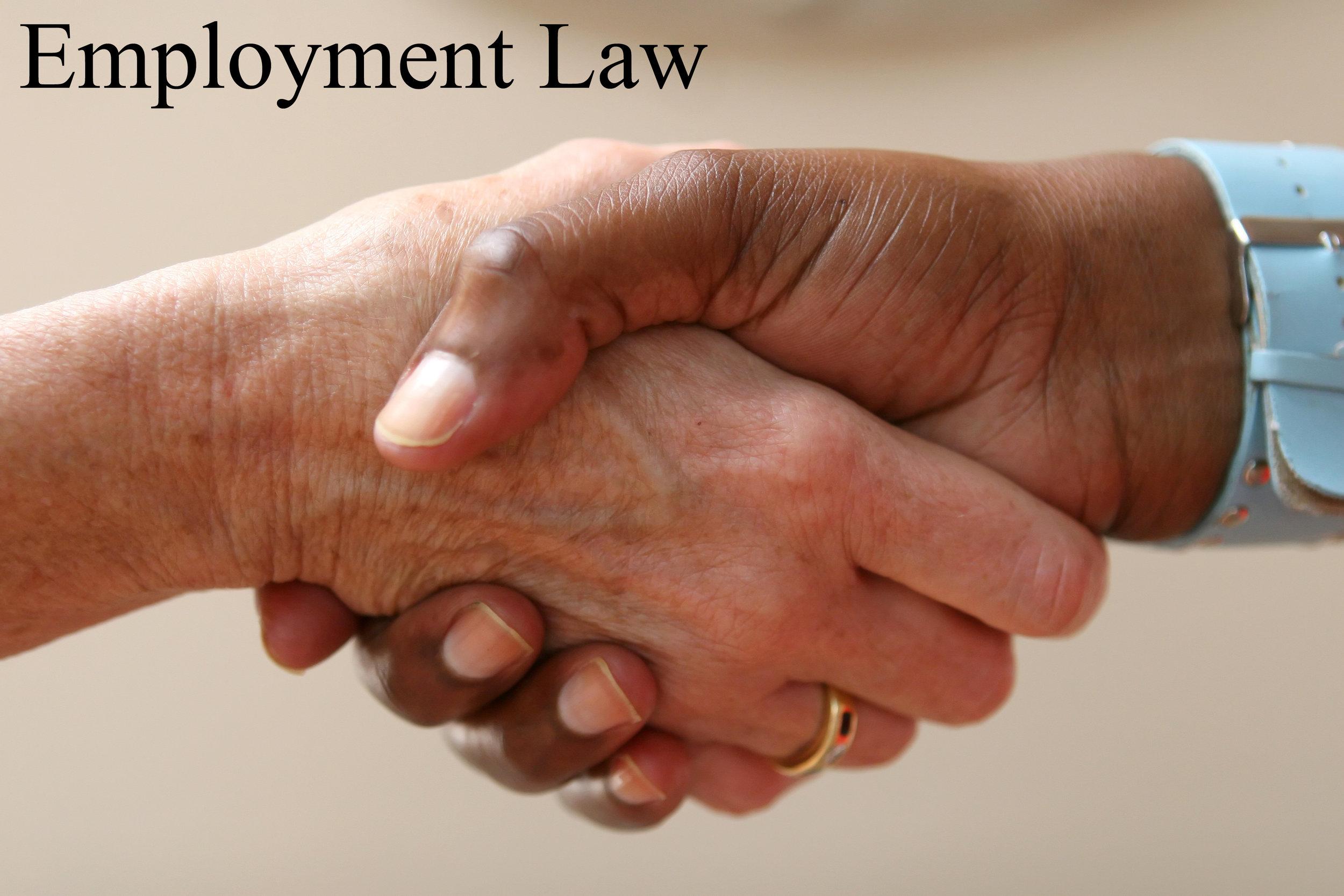 Employment Law copy.jpg