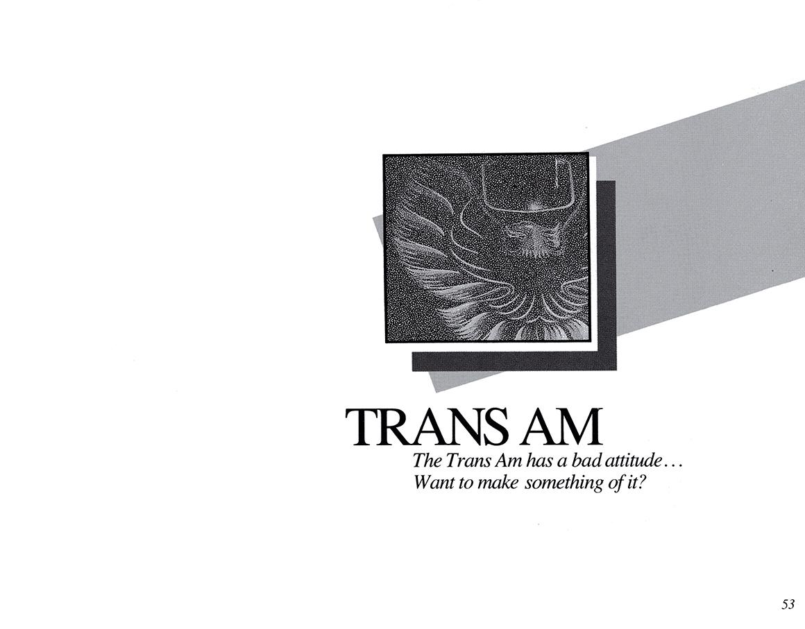 Trans Am 2.jpg