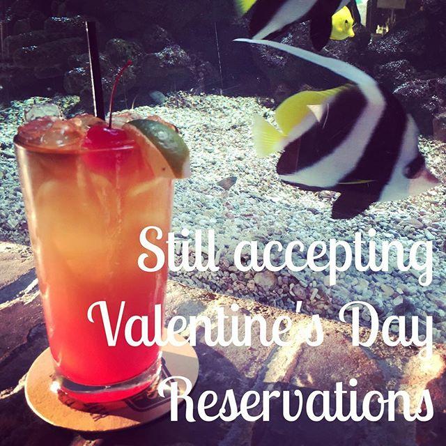 Make your reservation today! #valentinesday #eatfish #fishhouseveracruz #maitai #aquarium #february14 #seafood #sanmarcos #northcountysd