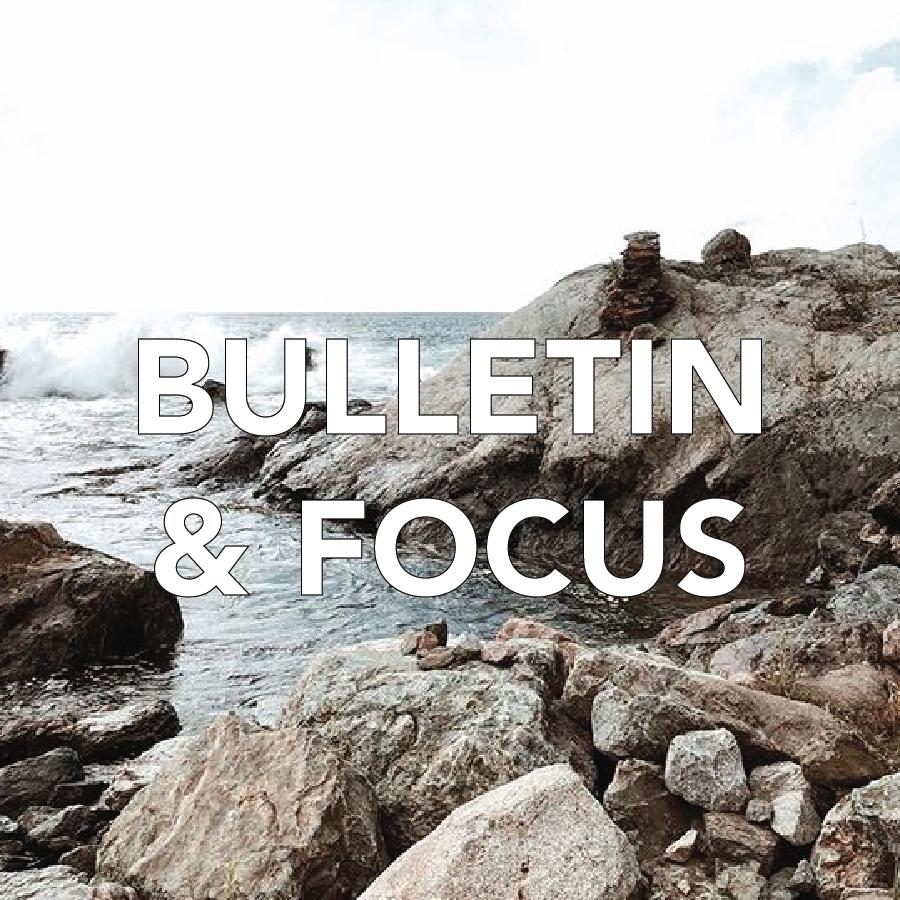 Bulletin & Focus