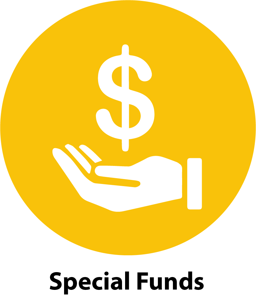 Circle Special Funds Icon - Yellow.png