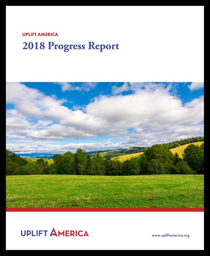 2018 Progress Report