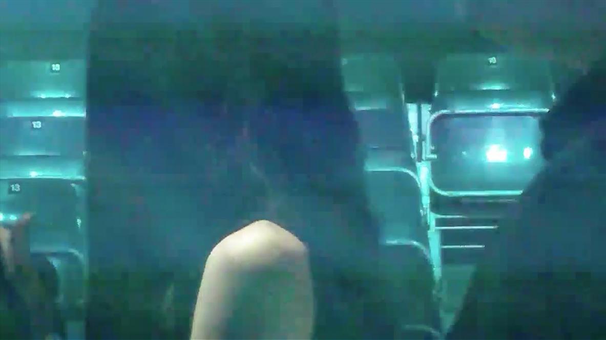 Miriam Laura Leonardi, MAH00394 , 2014, looped video, 5'15''