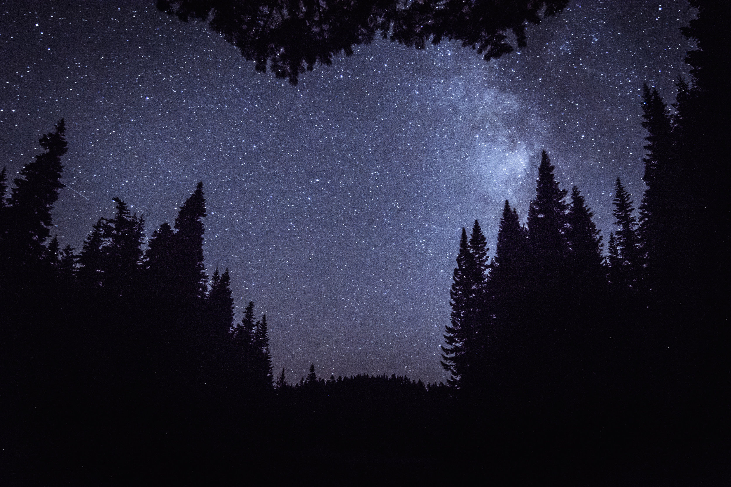 Mount Hood National Forest night sky © Gabriel Amadeus