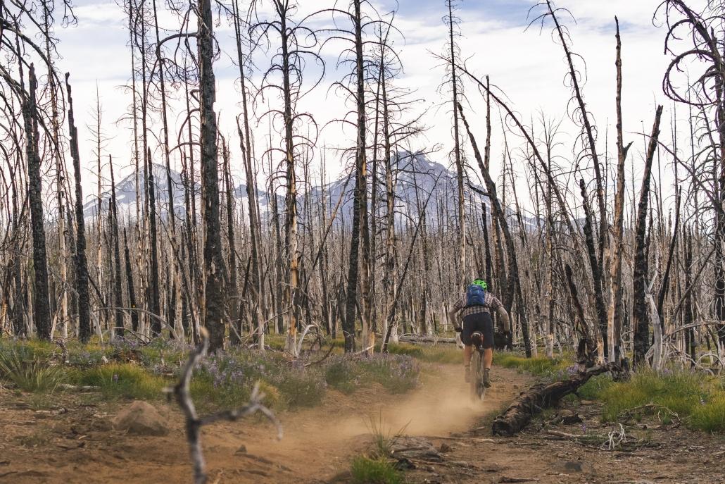 Metolius-Windigo-Trail-Oregon-Timber-Trail-1030x687.jpg