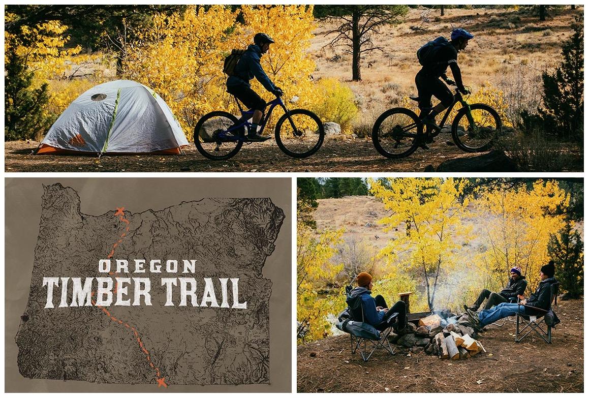 Giant Bicycles Takes a Rip Through the Fremont Tier — Oregon
