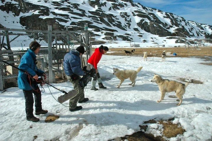 Ilulissat, Greenland (National Geographic)