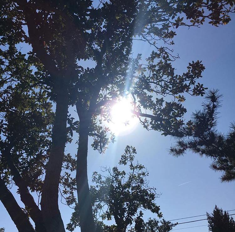 glendale_light_sunshine.PNG