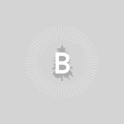 BACKROAD BRANDS  - logo development -