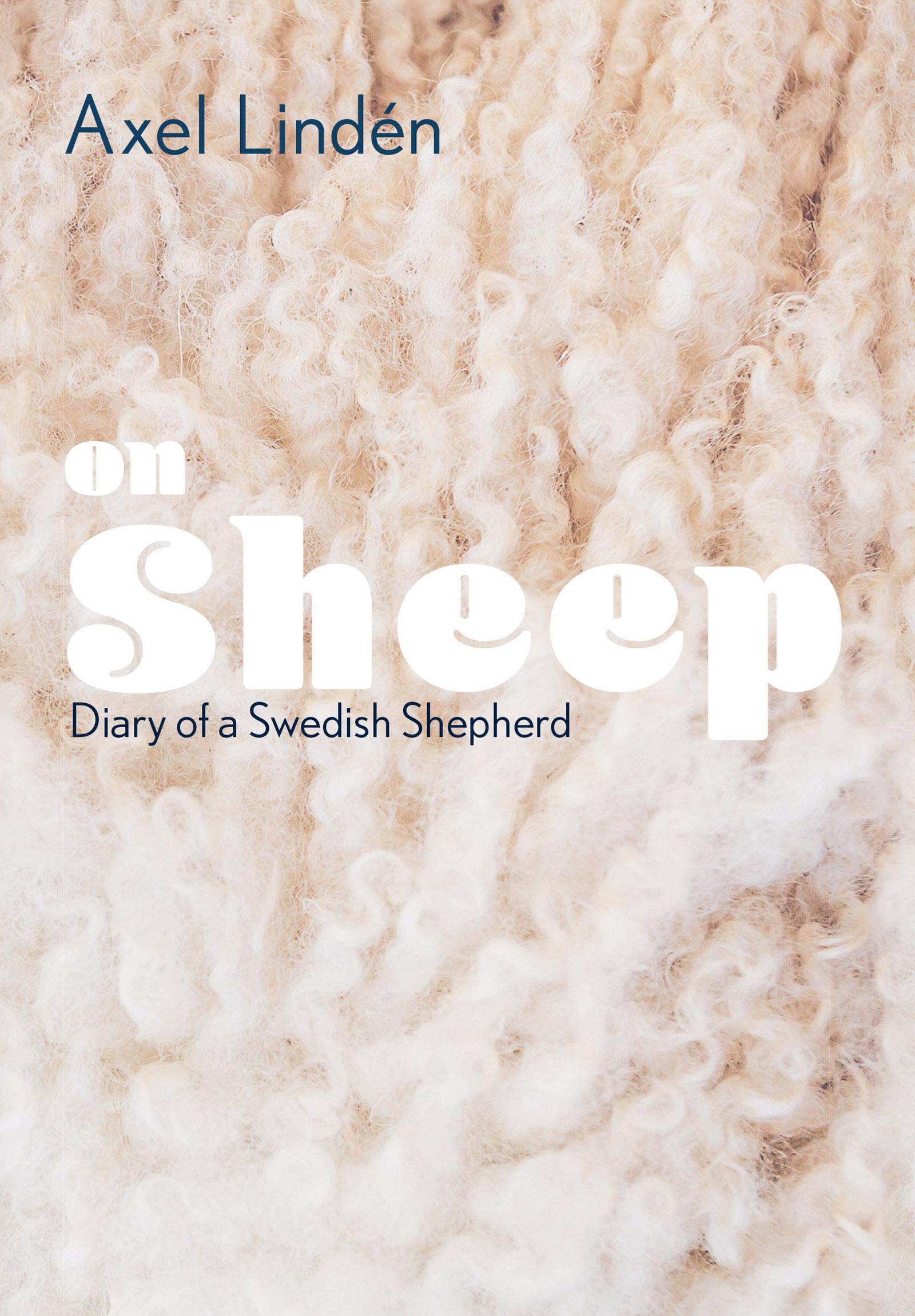 on sheep.jpg