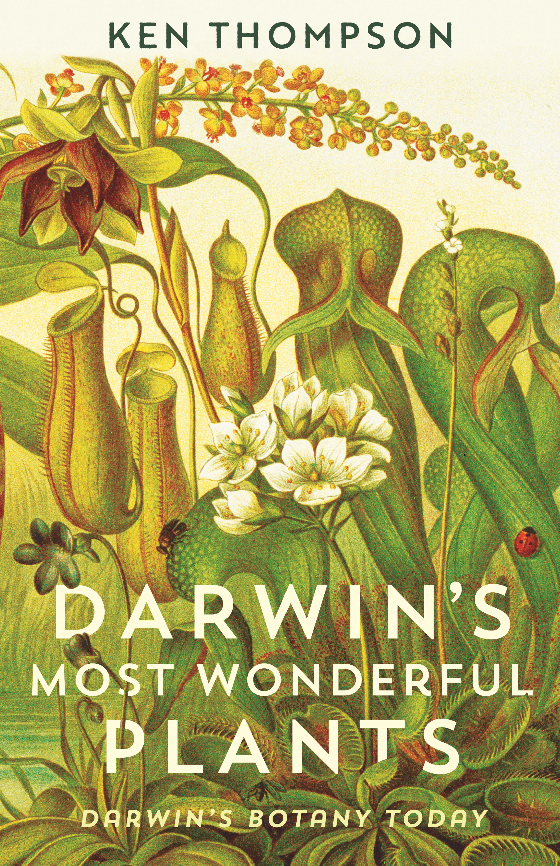 darwin's most wonderful plants.jpg