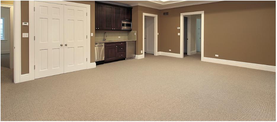 Carpet-2.png