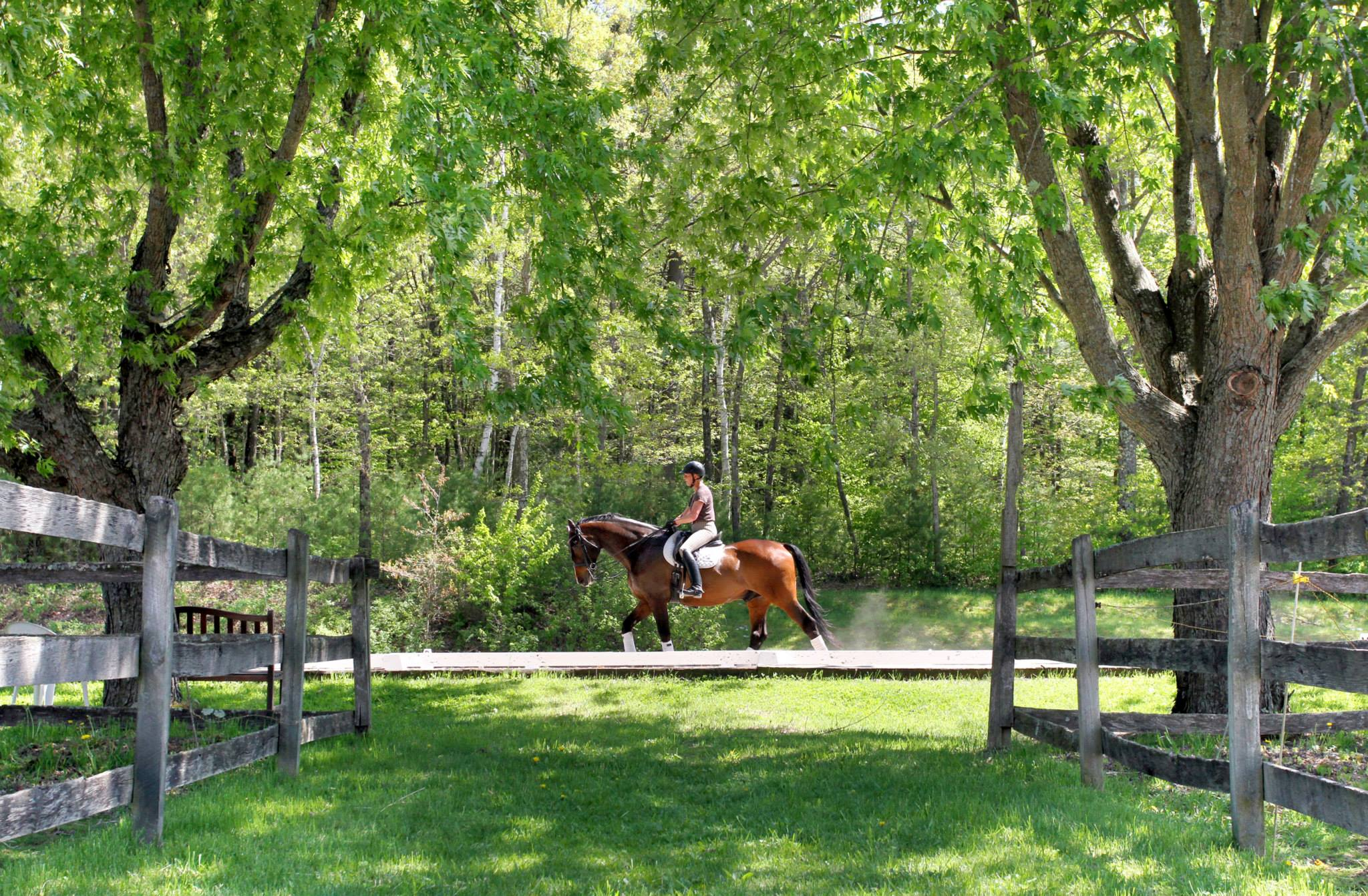 MONTAGUE, MASS. --Brenna Kucinski schools her horse Regent at Xenophon Farm in Montague on Wednesday. (Recorder/Micky Bedell)