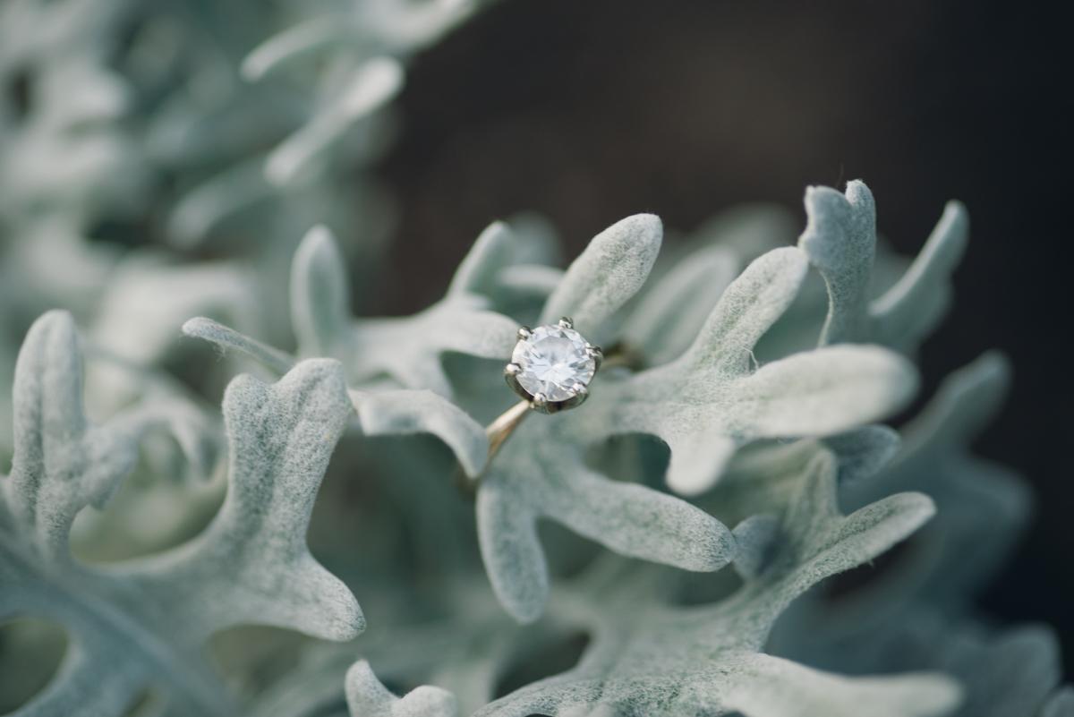 Toronto Wedding Photographer_AlalabsterJar Photography (30 of 54).jpg