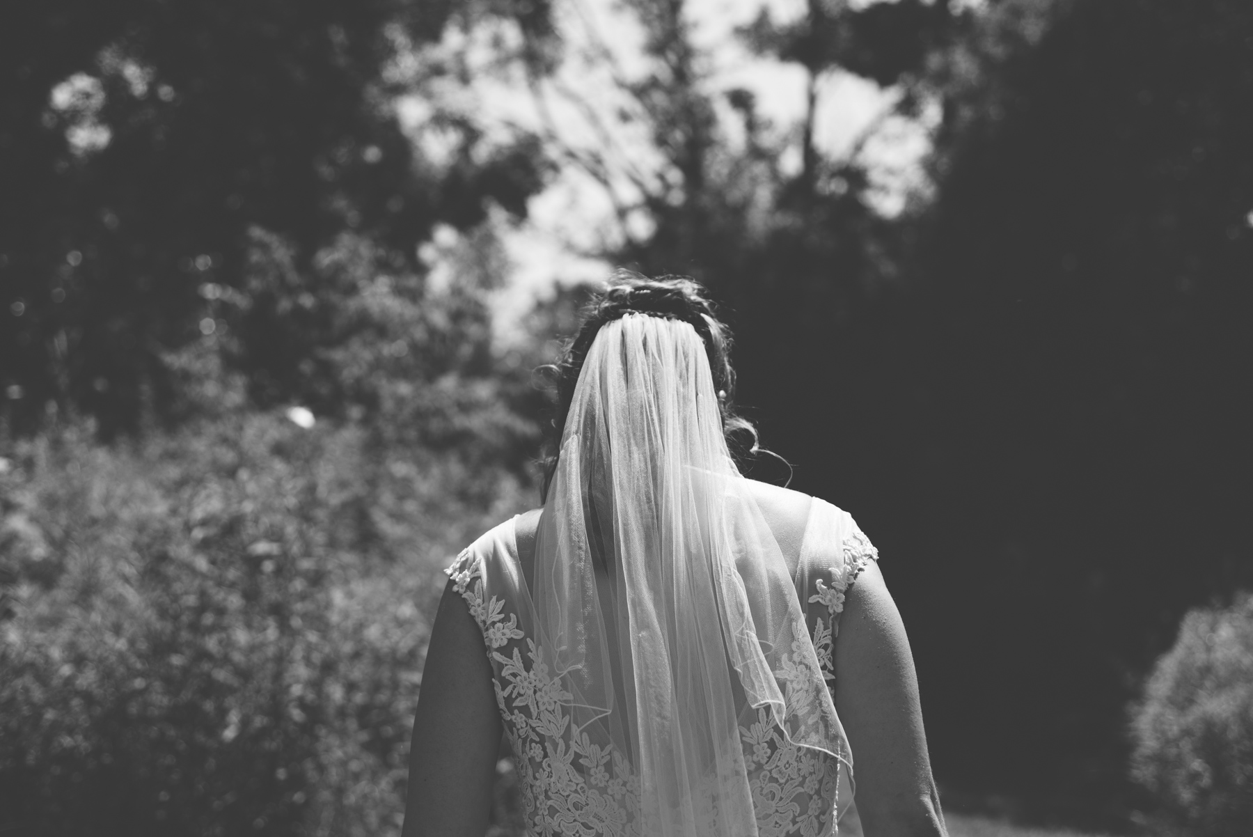 Backyard Wedding_Alabaster Jar (13 of 71).jpg