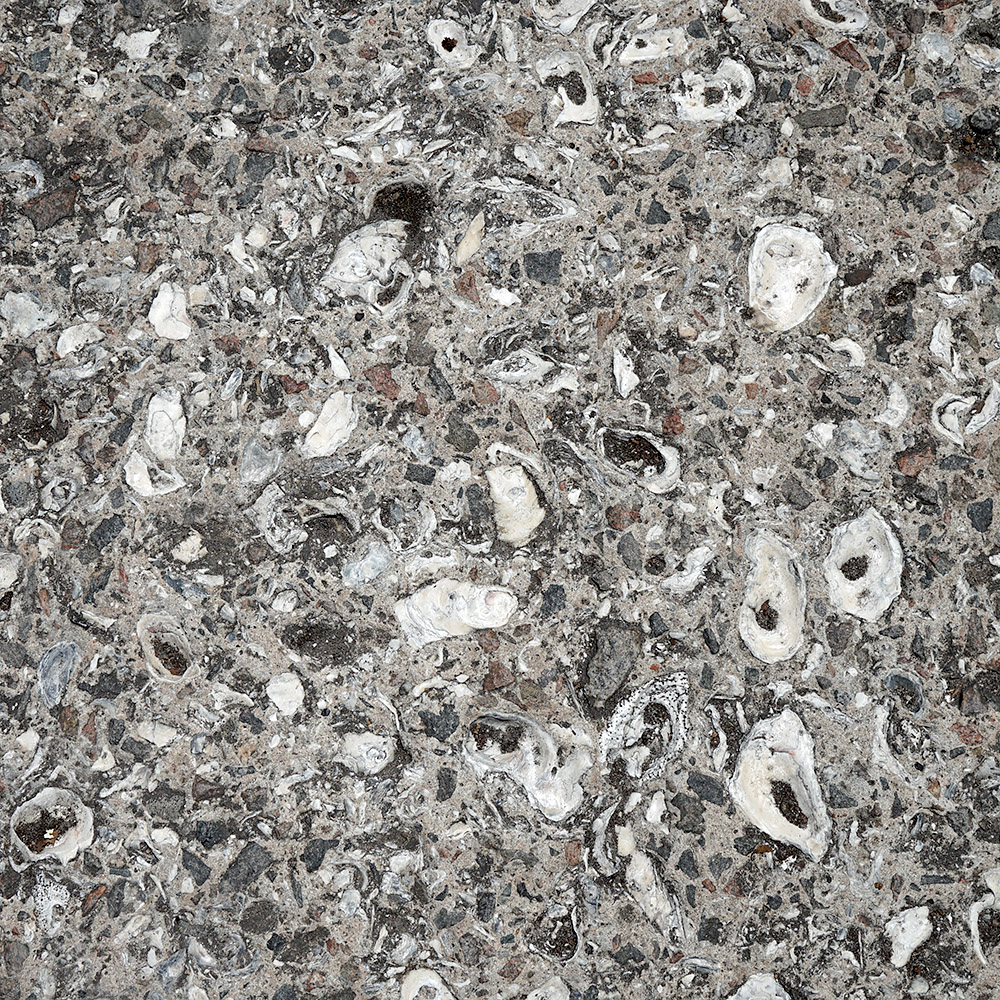 Concrete - Oyster Shell Agregate