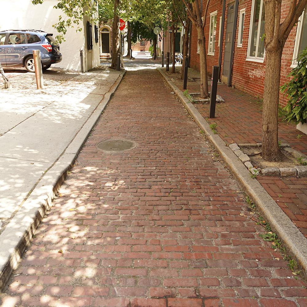 Red Vitrified Brick