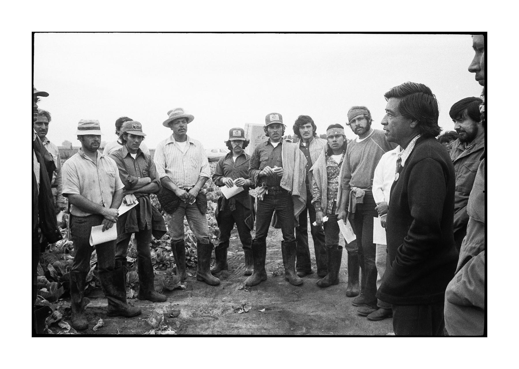 farmworkers-1-5.jpg