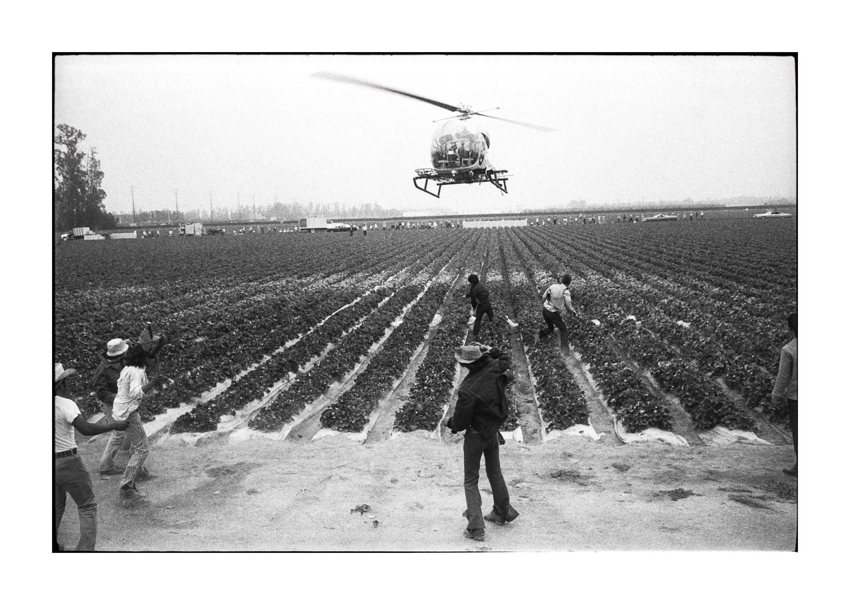farmworkers-15.jpg